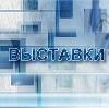Выставки в Новобратцевском